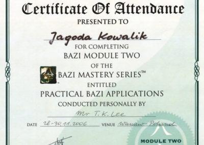 dyplom_ba-zi-modul-2