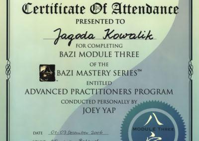 dyplom_ba-zi-modul-3