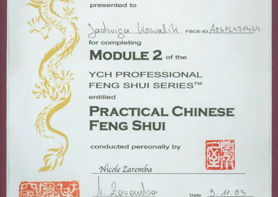 dyplom_module-2-practical-chinese-feng