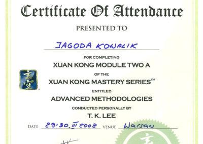 dyplom_xuan-kong-2